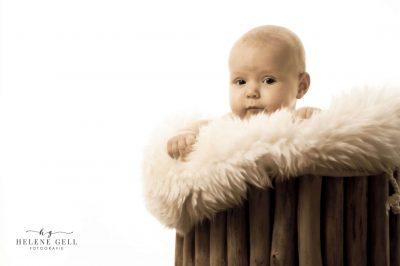 kinderfotografie galerie22